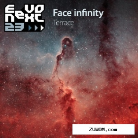 Terrace - Face Infinity (27.01.2011) MP3