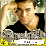 Enrique Iglesias - Gold Collection (2011)