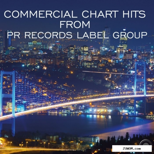 Альбом  commercial chart hits from pr records label group (2019)