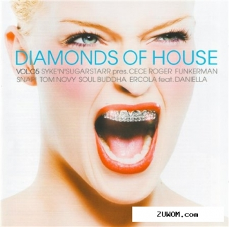 Va - diamonds of house vol. 5 (2008) 2xcd